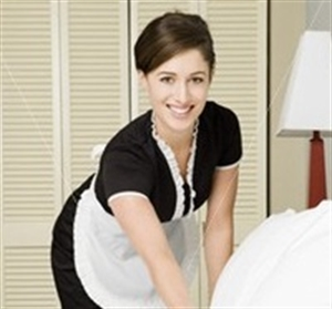 Existing Price Reduced Residential Cleaning Business